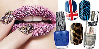 NEGLETRENDER: Ciate Caviar Manicure Set (kr 199), OPI Nail Lacquer (kr 150), Rock Cosmetics (kr 79), Isadora Magnetic Nails (kr 79), Cala (kr 69), Rock Cosmetics (kr 79).