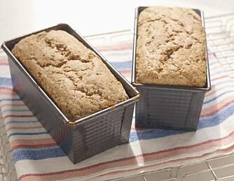Tyngre brød inneholder gjerne grovt mel og hele partikler, det gir et sunnere resultat. Foto: Brodogkorn.no/studio Dreyer Hensley