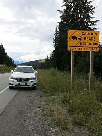 LITT NORGE: Bilene ble prøvekjørt i området mellom Vancouver og Whistler i British Columbia. FOTO: Martin Jansen