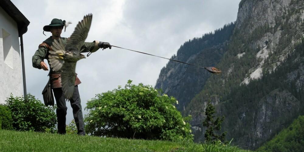 ANNERLEDES: En av mange store forskjellene på å vandre i Alpene og i den norske fjellheimen er at her ligger middelalderslott langs ruten. Noen av dem byr endog på flere rovfugleshow om dagen i sommerhalvåret.