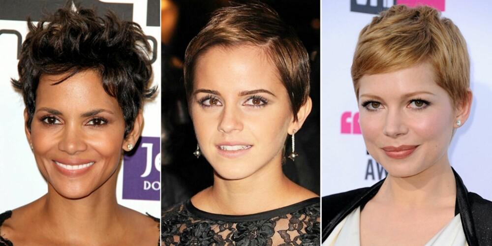 PIXIE: Mange er redde for å klippe håret kort, men kort hår kan kle de fleste - man må bare velge den rette klippen. Halle Berry, Emma Watson og Michelle Williams skiller seg ut blant alle de langhårede kjendisene med sine korte klipper.