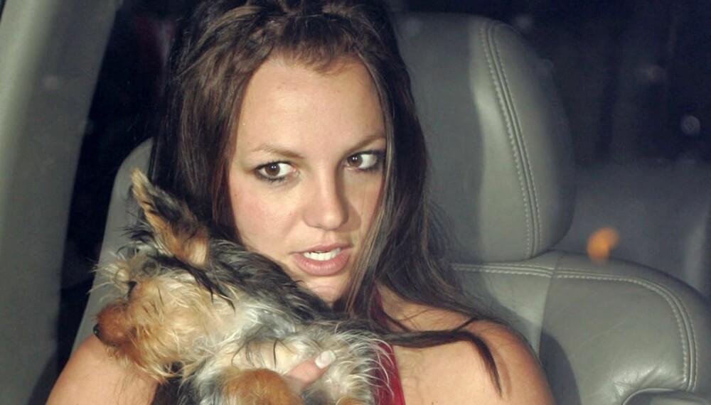 Britney Spears med hunden sin