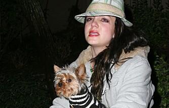 Britney Spears oppløst i tårer