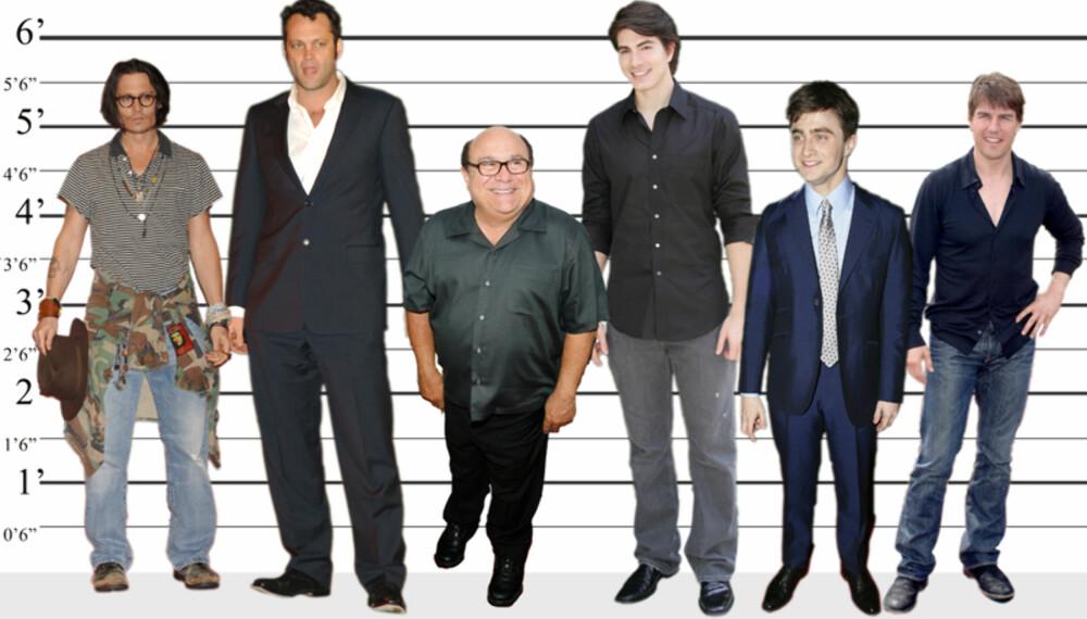 F.v. Johnny Depp (175 cm), Vince Vaughn (196 cm), Danny DeVito (152 cm), Brandon Routh (191 cm), Daniel Radcliffe (168 cm) og Tom Cruise (170 cm). (Foto: WireImage/All Over Press. Montasje: Anders Rasch)