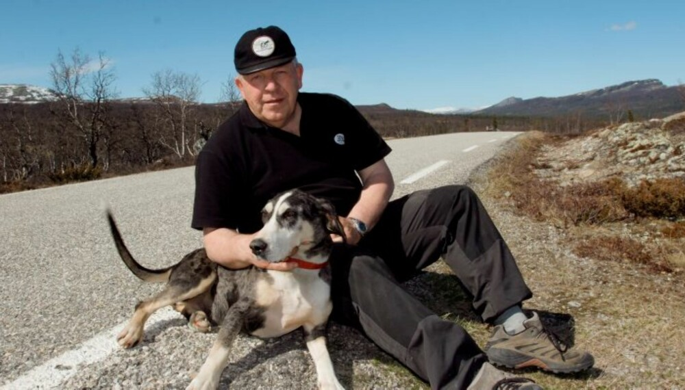 PASS PÅ: Over 35 hunder årlig kommer aldri hjem når de stikker av. Trafikken skader mellom 550 og 700 hunder hvert år. (Foto: Bjørn Brendbakken)