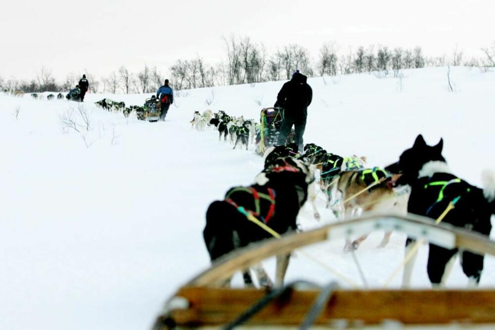 FRISKT: Å suse lydløst over snødekte sletter gir en magisk naturopplevlse.