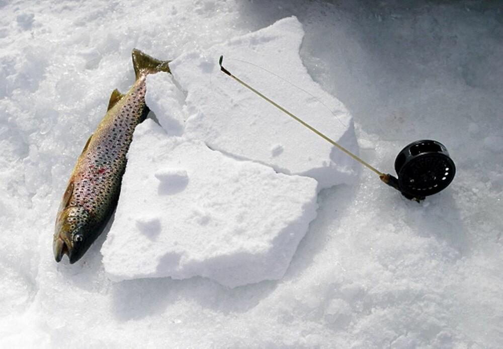 """TO SNØFLAK lagt mot hverandre hindrer at snøret fryser fast når hullet iser til. Du kan også bruke et """"lokk"""" av isopor."""