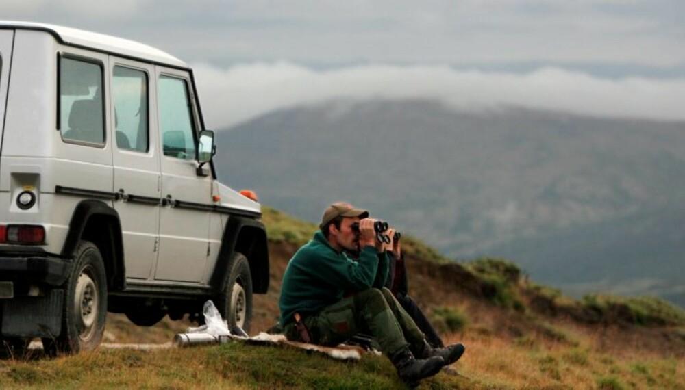 Ingen steder ser man bedre enn i villreinfjellet hvem som jakter til fots og leter opp dyr og hvem som bruker bilen til samme formål...