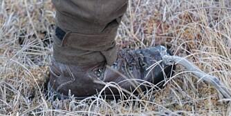 Med sokker utenpå støvlene beveger du deg mer lydløst. Foto: Thor-Olav Moen