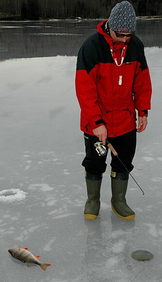 BLANKIS: Kollega Krister i dyp konsentrasjon. Når isen er fri for snø er det best jaktlys for abboren. Det gjelder å utnytte bettperiodene.