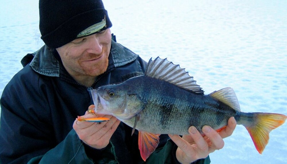 FINN FISKEN: Med Alt om Fiskes nye storfiskkart blir det enklere å finne fram til vann med stor abbor.