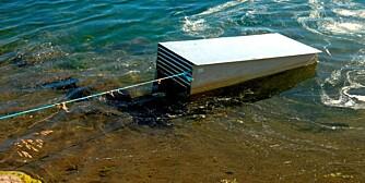 RUGEKASSE: Hunnfisken ble satt i slike kasser langs elvebredden for at rogna skulle modnes.