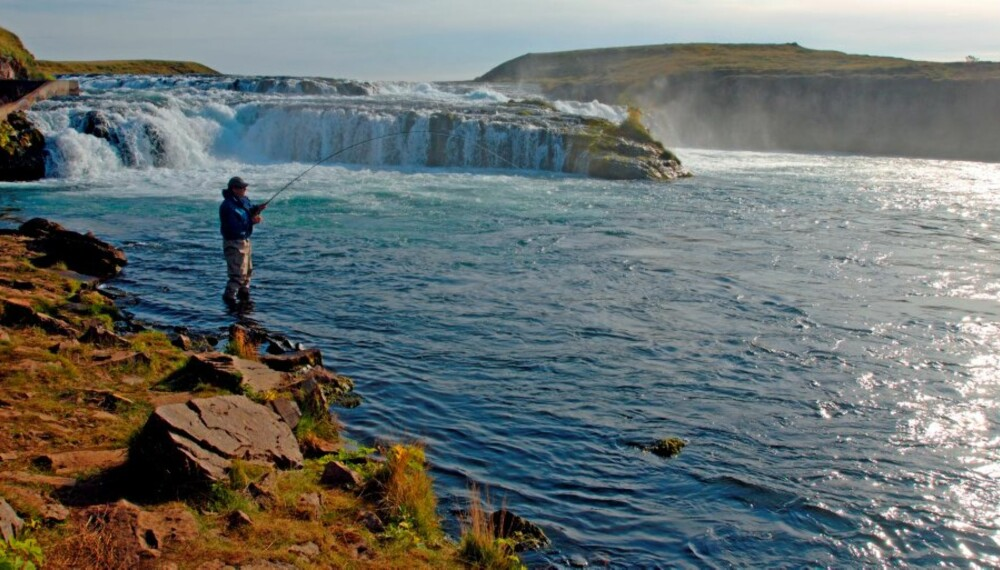 VAKKER OG VILL: Vestre Rangá bød på fantastisk laksefiske i utrolige omgivelser.