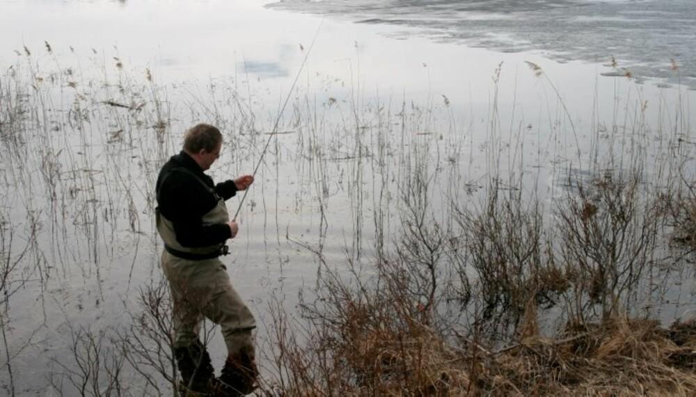 Vårfiske etter ørret. (Foto: Dag Kjelsaas)