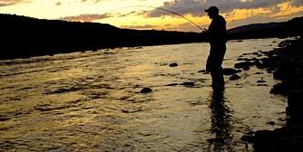 SPENNENDE LAKSEFISKE: Vil du oppleve et litt annerledes laksefiske, så prøv Finnmarksvidda! (Foto: Bjørn M. Pettersen)