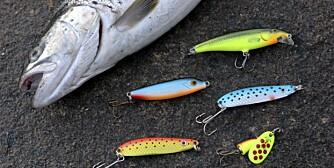 UTVALG: Et knippe wobblere og sluker til sjøørretfiske. Ikke vær redd for å fiske med skarpe farger!