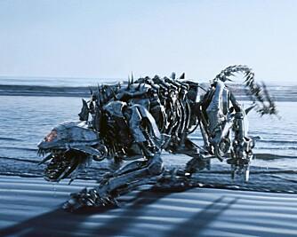 Monsteret Ravage fra Tranformers. Slike kan godt få snu litt opp-ned på bibeltro homfobe mener Megan Fox.