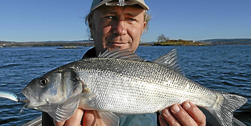 fiske i oslofjorden med bat