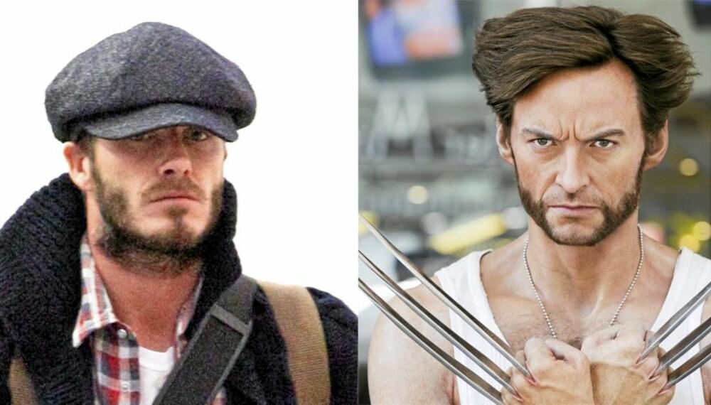 JERVEN: David Beckham har tenkt til å stille som Wolverine (Hugh Jackman) under årets halloween-feiring.