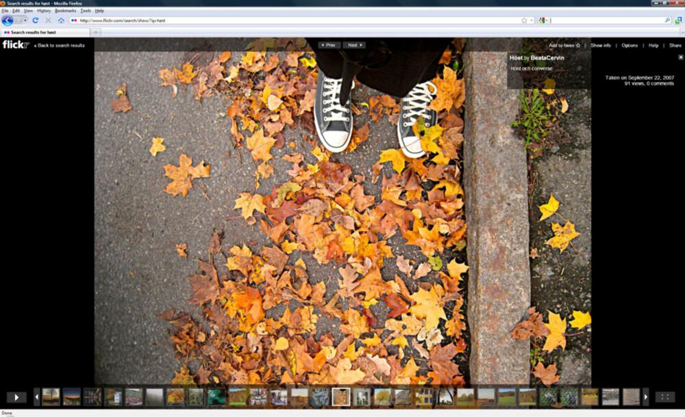 LYSBILDER: Flickrs egen lysbildefunksjon kan med fordel brukes til å titte på bilder, gjerne i fullskjerm. Ulempen er at det er Flash-basert, noe som gjør at enkelte bilder virker litt mindre skarpe enn de egentlig er.