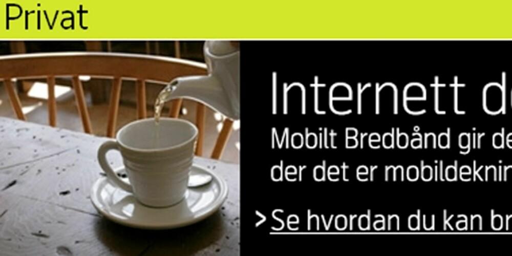"""GJEMTE PRISER: Nettsiden der Telenor tilbyr mobilt bredbånd opplyser ikke om prisene utenlands. Men under """"Tips og nyheter"""" råder Telenor kundene til heller å bruke trådløssoner når de er i utandet."""