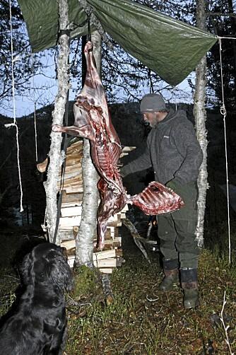 KJØTTMAT: Høsten ble brukt til jakt for å fylle kjøttlageret.
