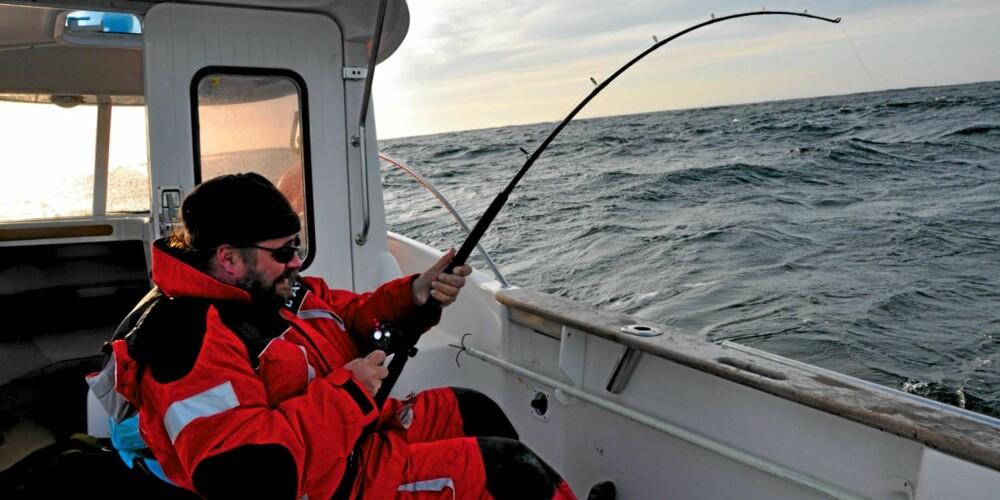 FIGHTENDE FORLEGGER: Finn Jørgen solberg, sjefen for Vega forlag, kjemper med sin livs fisk, men taper. Han fikk imidlertid en slappfisk på drøye 13 kg som plaster på såret.