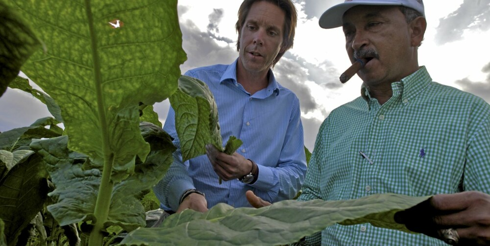 INSPEKSJON: Conny Andersson fra Swedich Match sjekker tobakksplantene hos plantasjeformann Fransisco Hernandez.