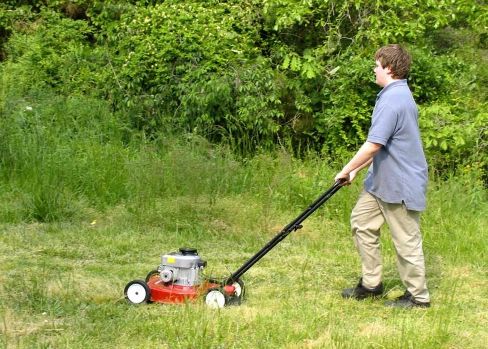Sørg for at gressklipperen har skarpe blader/kniver. Sløve knivblader gjør at gresset flikes opp, og gule gresstupper blir resultatet.
