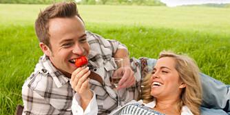 PERFEKT: Piknik om sommeren er herlig og avslappende.