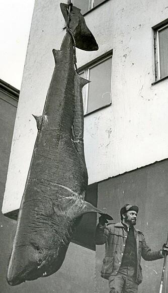 VERDENSMESTER: Terje Nordtvedt brukte en 80-punds Shakespeare havfiskestang og en god, gammel Penn 12/0 med 130-punds snøre for å fange den tredje største fisken i IGFAs historie.