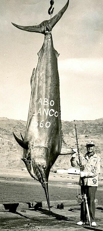 I GAMLE DAGER: Alfred C. Glassell brukte blant annet en god, gammel Fin-Nor 130-punds multiplikatorsnelle da han tok den nesten 4,5 meter lange verdensrekorden på svart marlin utenfor Peru i 1953. Glassell regnes som en av big game-fiskets store legender.