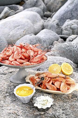 Sjømat smaker ekstra godt om sommeren. (Foto: Linnea Press)