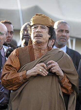 Moammar al-Gaddafis sønner lider av sviktende virkelighetsoppfatninger.