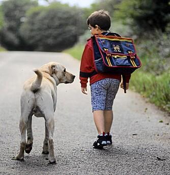 BARNAS UTVIKLING: Barn som vokser opp med kjæledyr utvikler selvbeherskelse, og lærer seg å ta ansvar.