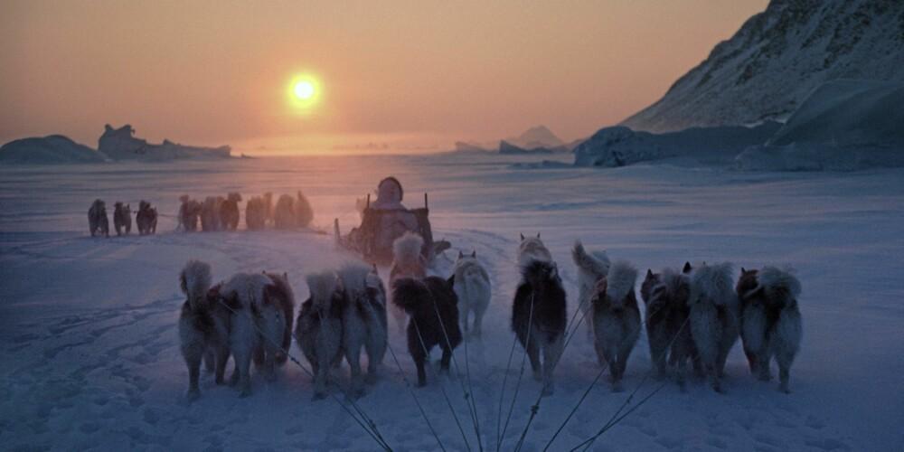Inuittjegere og deres hundespann kjører inn i solnedgangen etter nok en dag med vellykket jakt på isen.