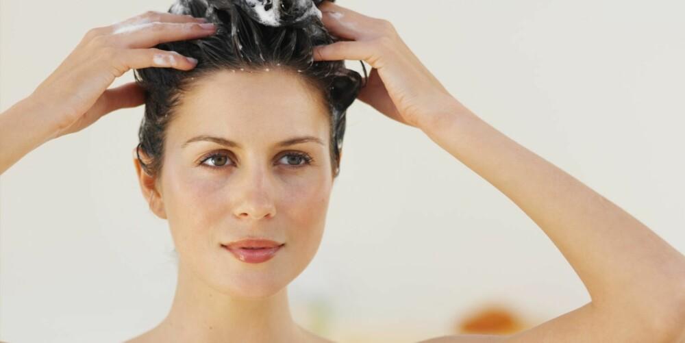 EN UTING: - Det at folk vasker håret hver dag er en uting, og kommer av at de ikke vet bedre, mener frisør Gulbrandsen.