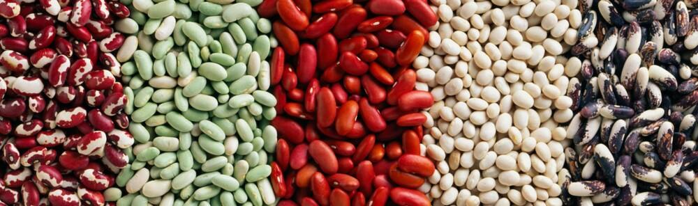 BØNNER: Bønner er et viktig supplement til det vegetariske og veganske kostholdet. Her er fem forskjellige sorter.