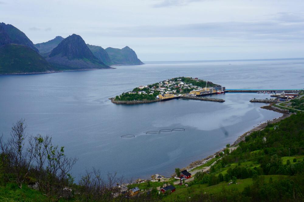 FISKEVÆR: Fiskeværet Husøy er under én kvadratkilometer stort. FOTO: Geir Svardal