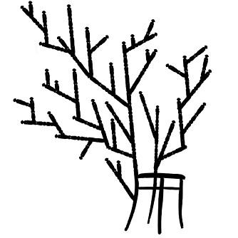 MØBEL, KUNST ELLER VITS: Kapstokstoel begynner som en vanlig stol, men ender som et tre. Design ved Sjoerd Vroonland, www.sjoerdvroonland.nl.