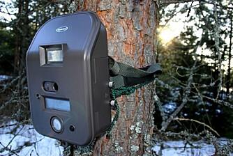SOLA I RYGGEN: Hvis det er mulig, bør kameraet ha sola i ryggen.