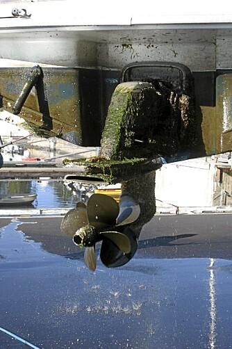 Sjekk alltid propellen og sinkanodene.