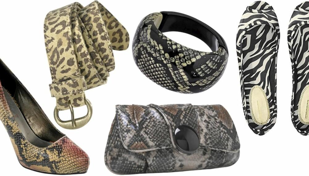 FRA VENSTRE: Sko fra Ellos (kr 499), belte fra Ellos (kr 149), vekse fra Accessorize (kr 289), armbånd fra Topshop (kr 107), sko fra H&M (kr 99).