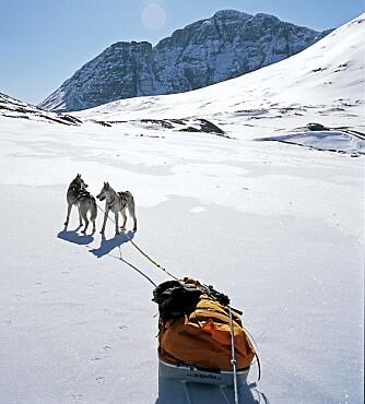SNØSOMMER: Får du ikke nok snø om vinteren, kan du legge sommerferien til Svalbard.