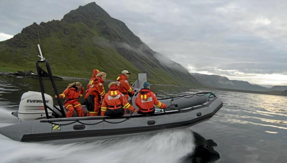 HAVSAFARI: Dra på guidet tur i frisk sjøluft utenfor Ålesund.