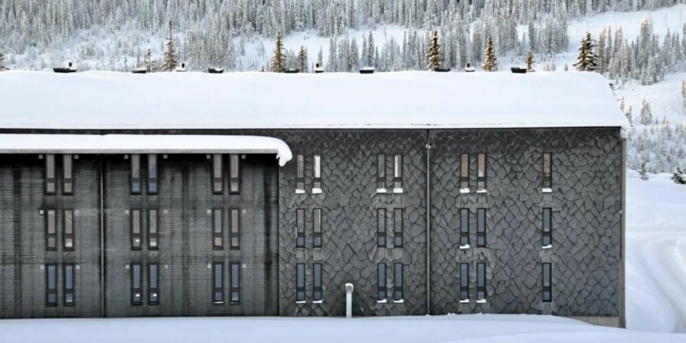 FASADEN PÅ STUDIO H: Betongbygget er delvis dekket med villskifer på ytterveggen.