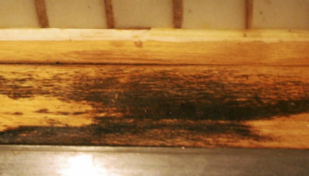 BENKEPLATE: Mellom vask og vegg blir benkeplaten lett utsatt for fukt.