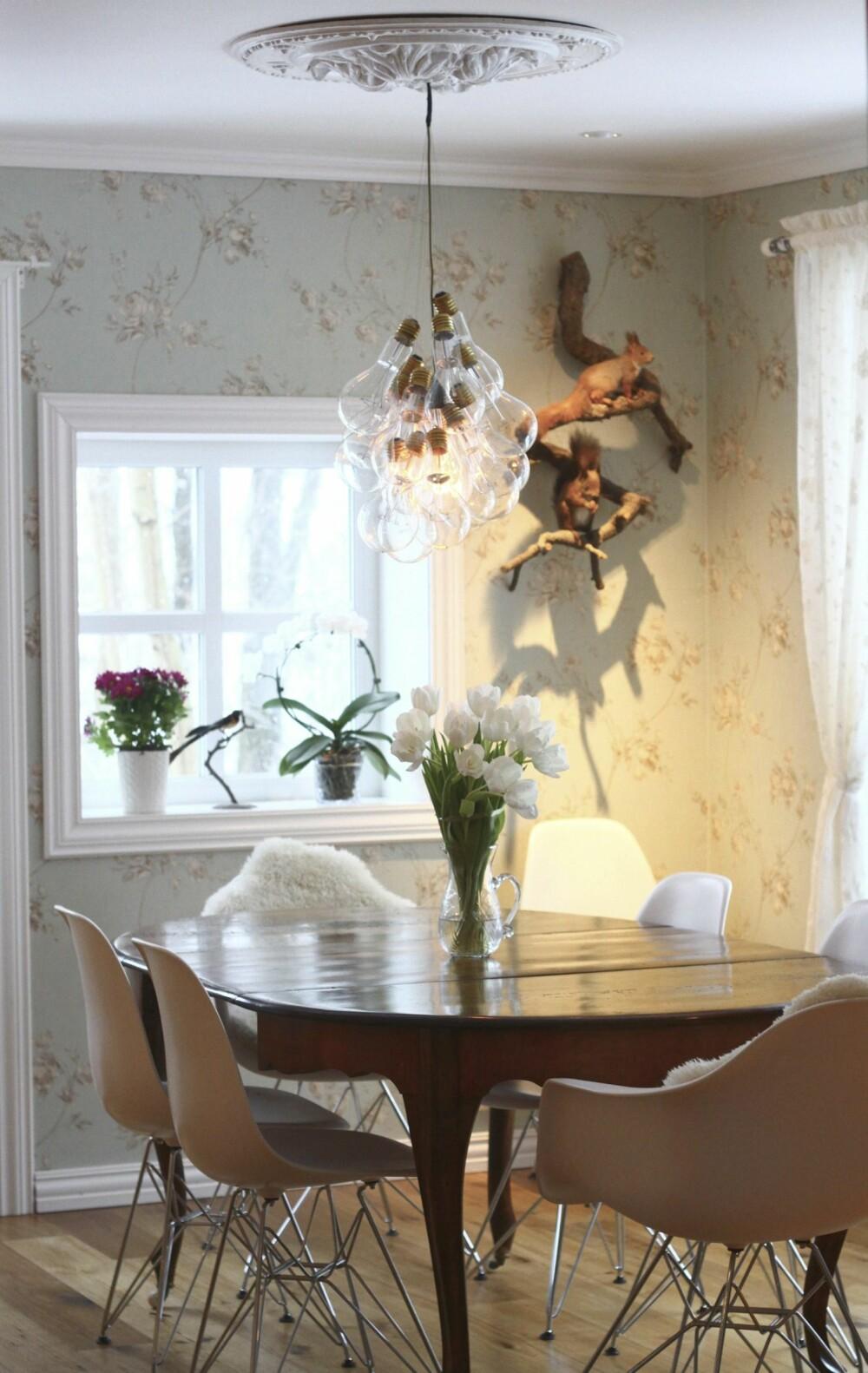 I spisestuen er et gammelt spisebord fra loppemarked kombinert med stoler i moderne design. På veggen henger to utstoppede ekorn som mannen i huset har arvet.