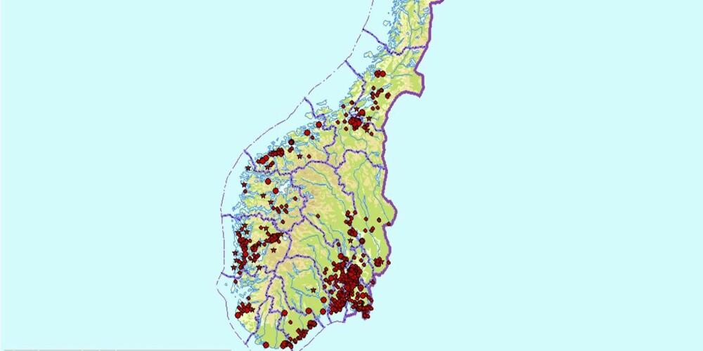 FYLDIG: Dette kartsnittet viser spredningen traktkantarellens spredning i Norge. Du kan zoome inn så nærme huset ditt du vil, og se om det er rapportert inn kantarellfunn et sted nær deg. Er det ikke det, kan du rapportere inn hvis du finner kantarell.