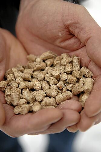 PELLETS: Pellets er er et alternativ til vedfyring, men først må du kjøpe pelletsovn.